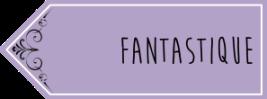 """fantastique"""